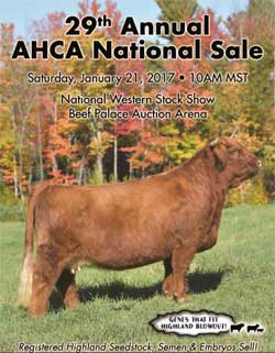 Sale Catalog Cover